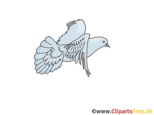 Ziemlich Malvorlagen Taube Vogel Fotos - Entry Level Resume Vorlagen ...