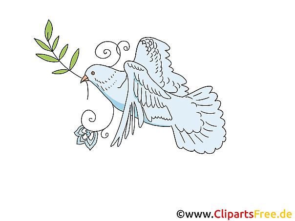 Taube Zu Pfingsten Clipart Bild Cartoon