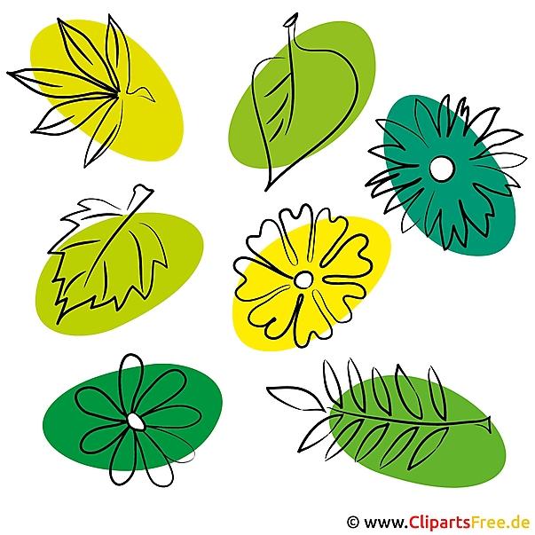 Gratis zomerfoto's - bladeren, bloemen, planten