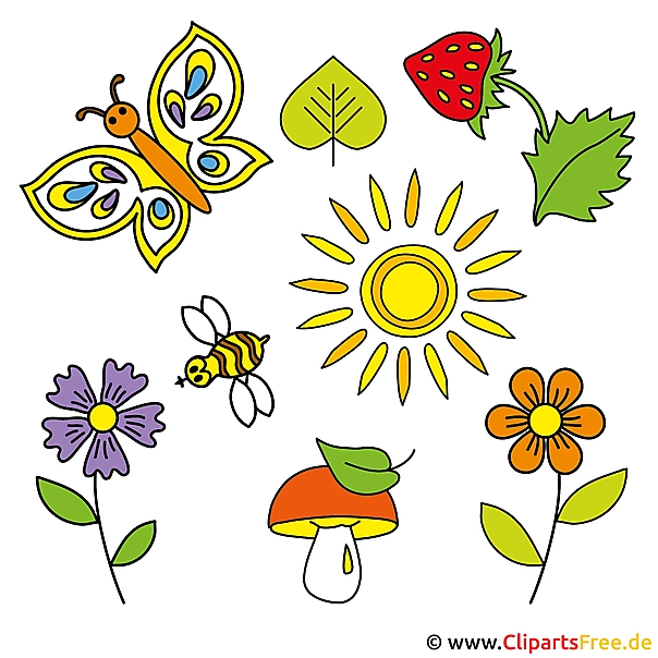 Gratis zomerafbeeldingen - paddenstoel, zon, aardbei, bloem, bij