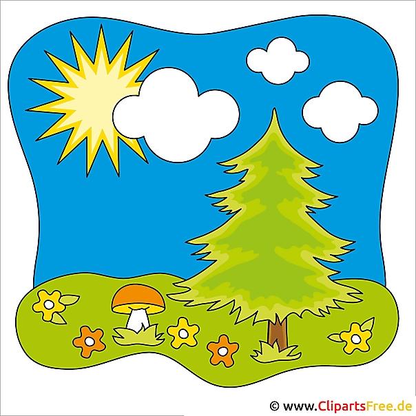 Fir Tree Clip Art - zomer Clipart gratis