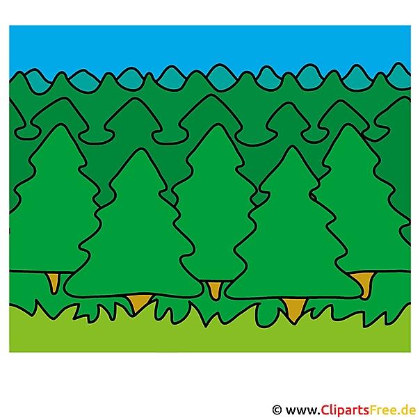 Dennenboom clipart en illustraties