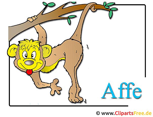 Affe Clipart-Bild Zoo