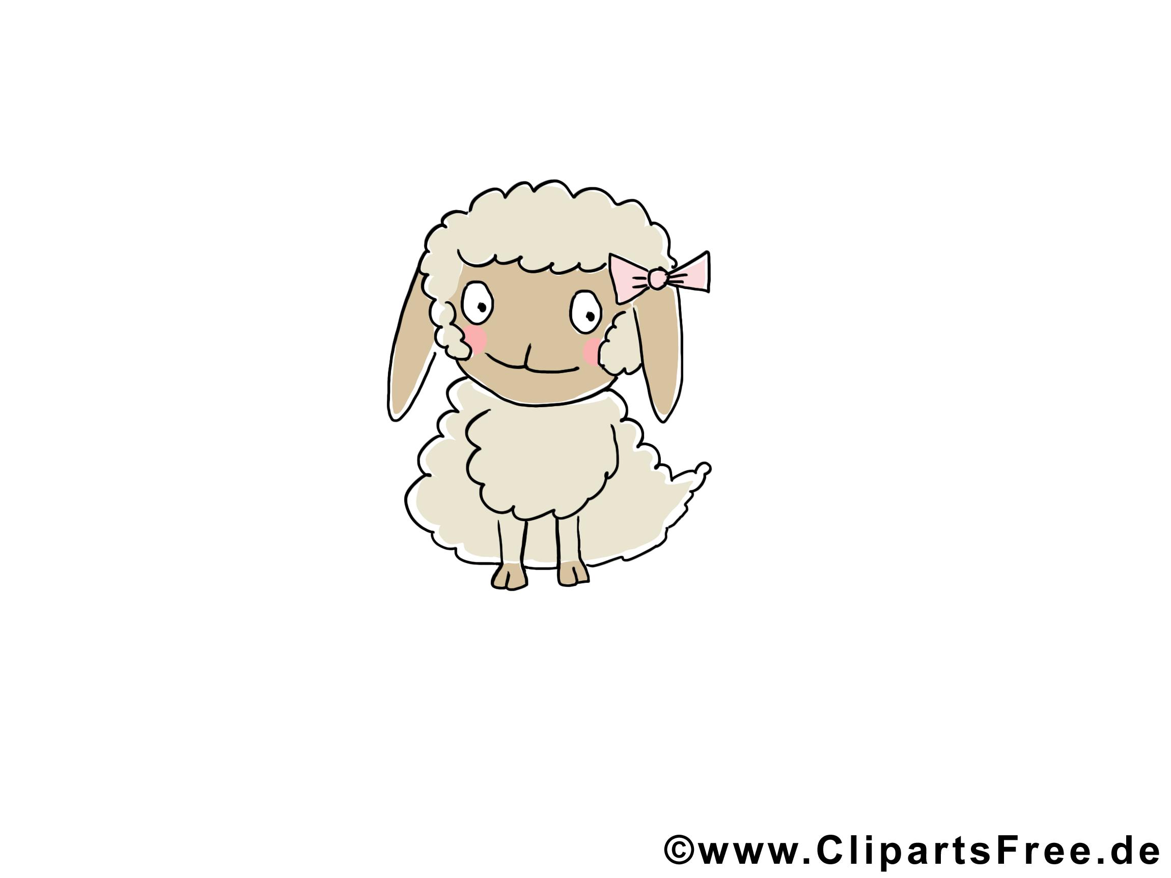 Baby Cartoon Bilder von Tieren - Schaf Baby