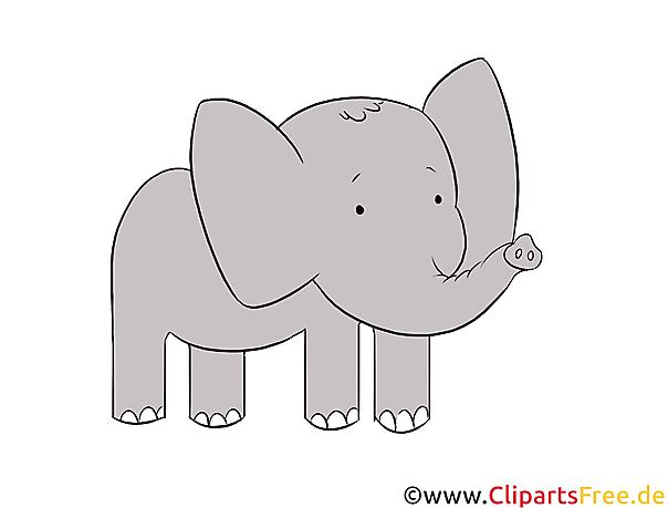 Elefant Clipart, Illustration, Bild kostenlos