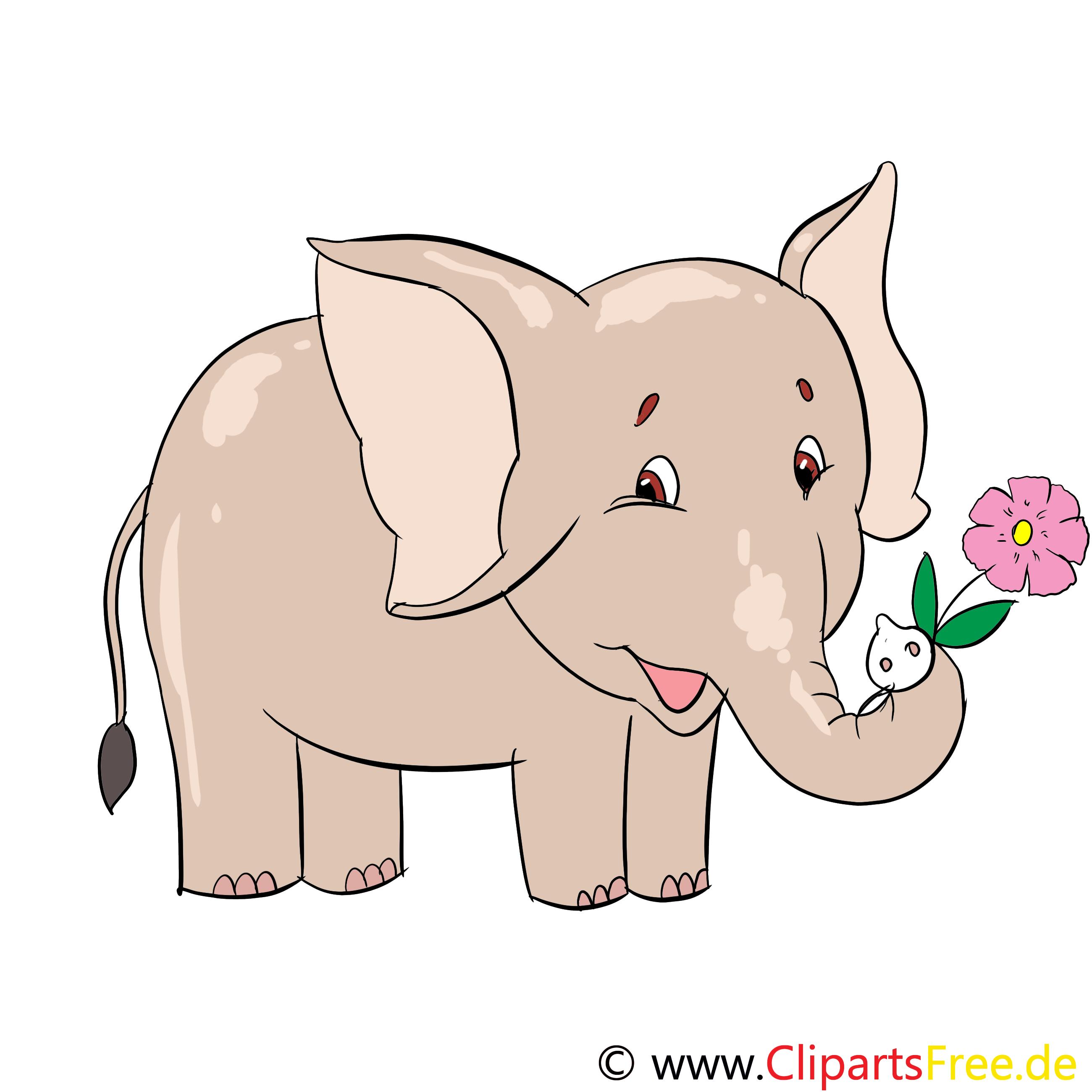 Kleiner Elefant Illustration, Clip Art, Bild, E-Card