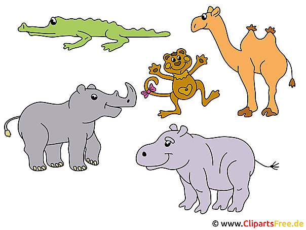 Safari Cartoons