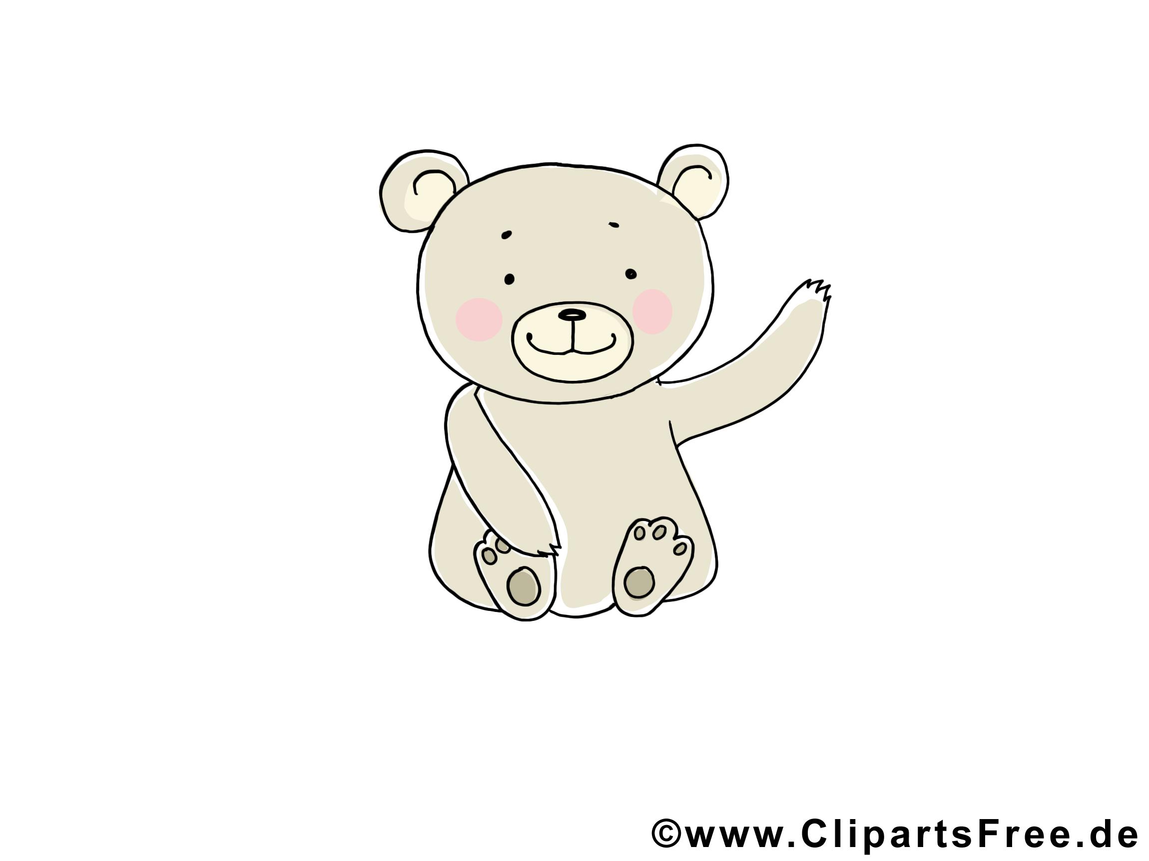 Teddybaer - Tierbilder gratis