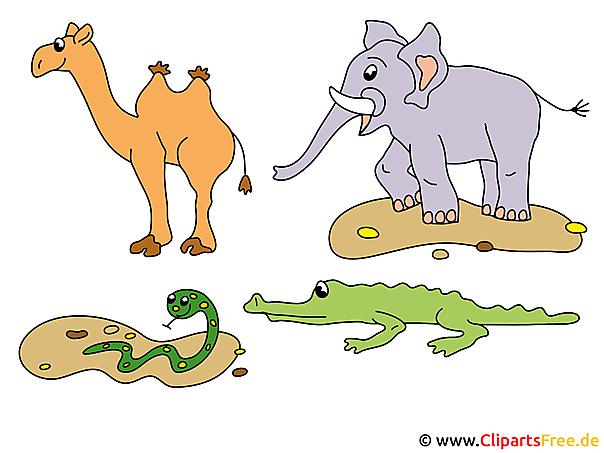 Tier Clipart Afrika