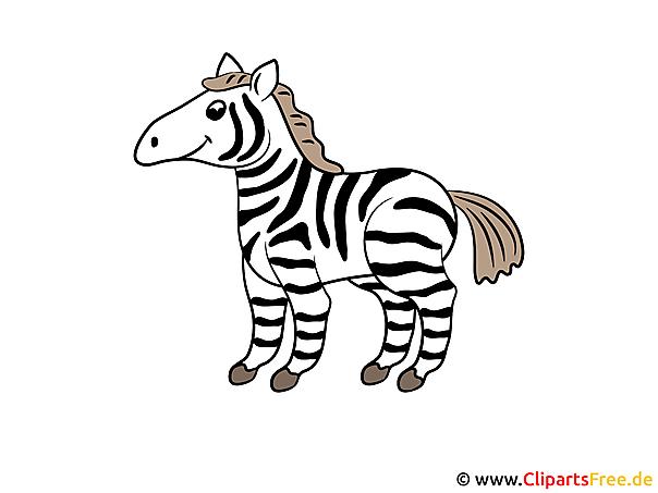 Zebra Comic