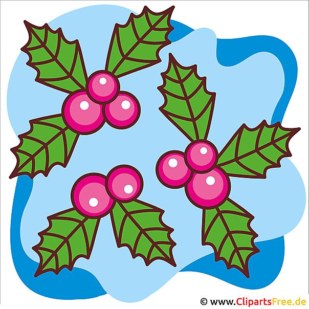Eberesche Bild Clipart zu Weihnachten