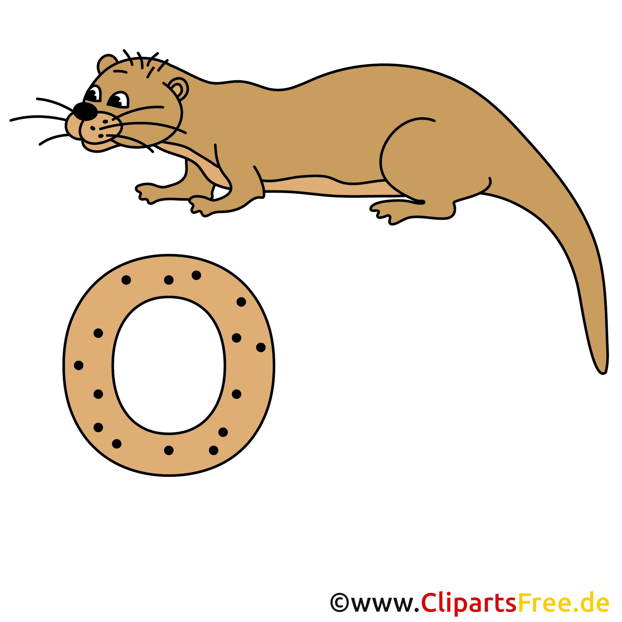 Deutsch Alphabet - Otter Bild