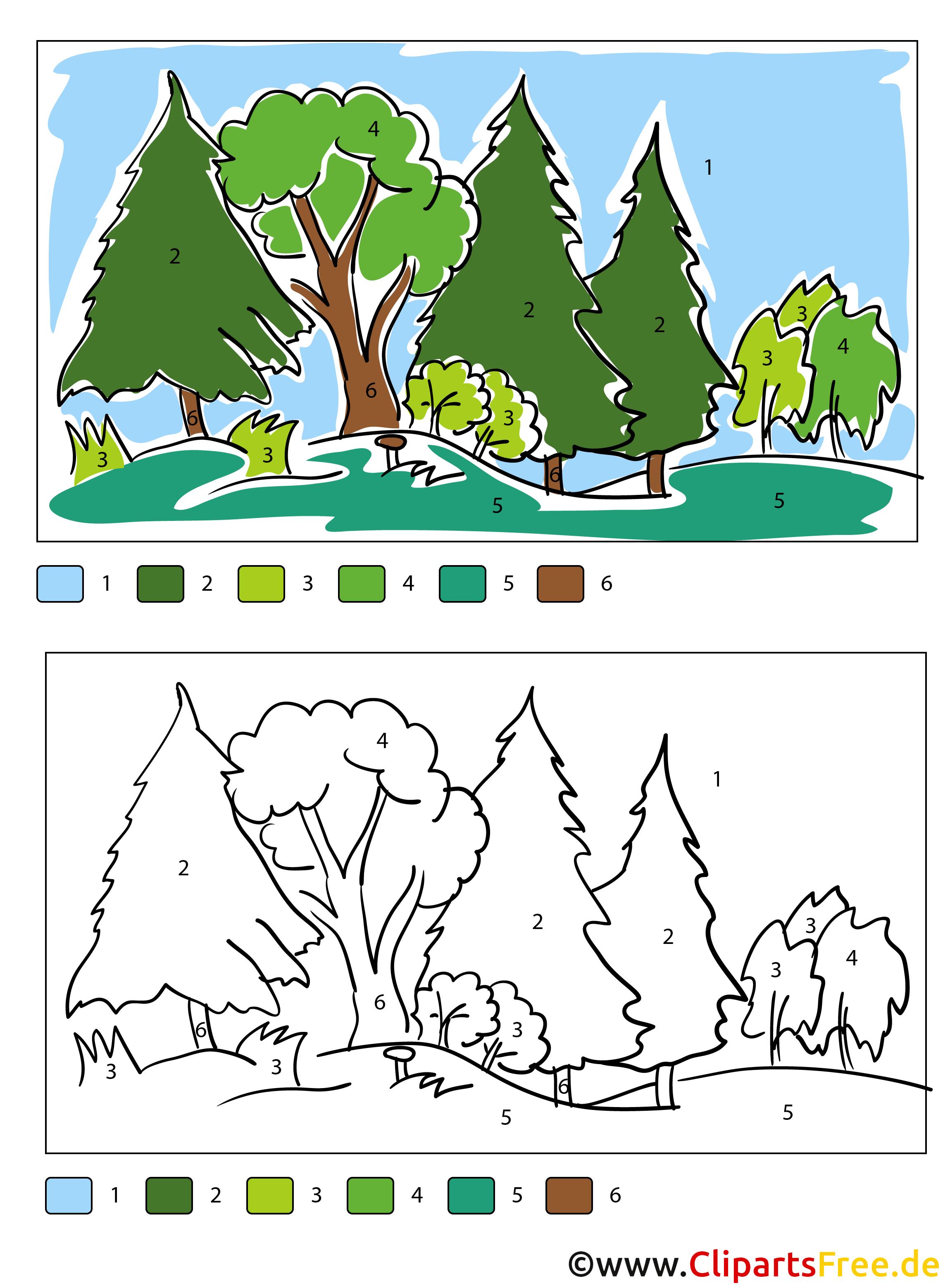 Orman Boyama Sayfası Numaralarına Göre Boyama