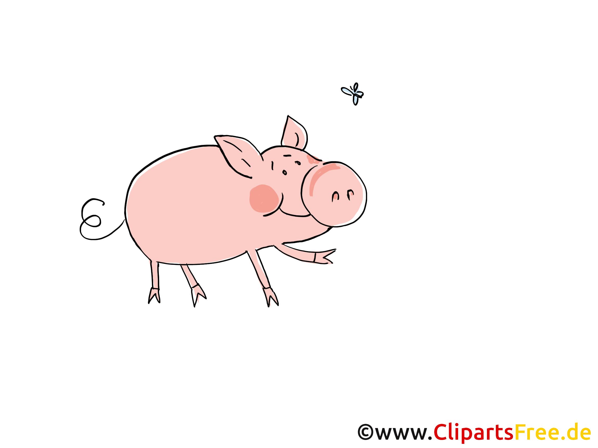 Bauernhof Bild Schwein auf der Wiese