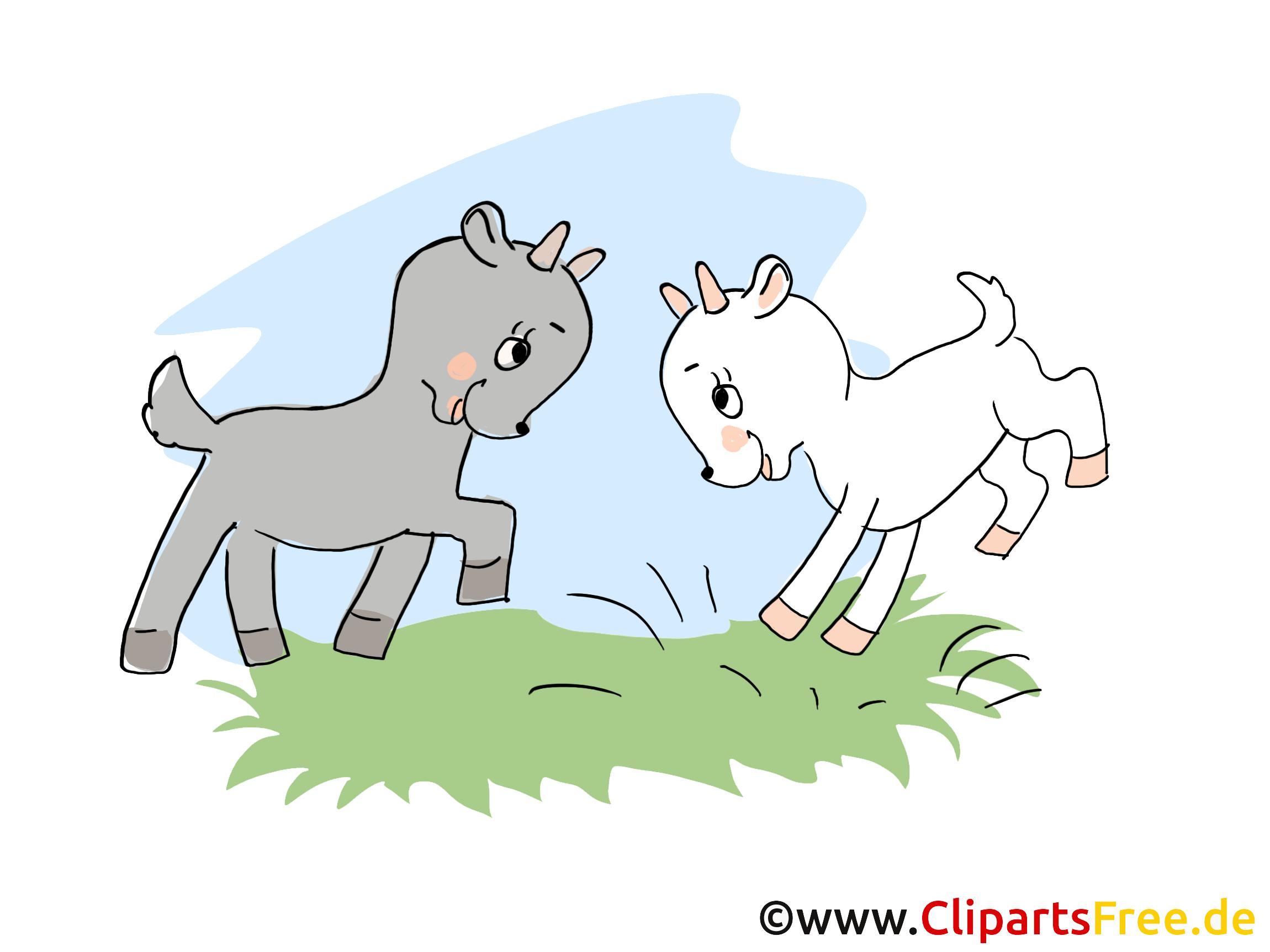 Bilder von Tieren auf dem Bauernhof