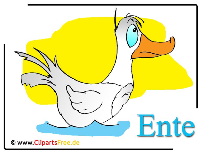 Ente Cartoon-Clipart free