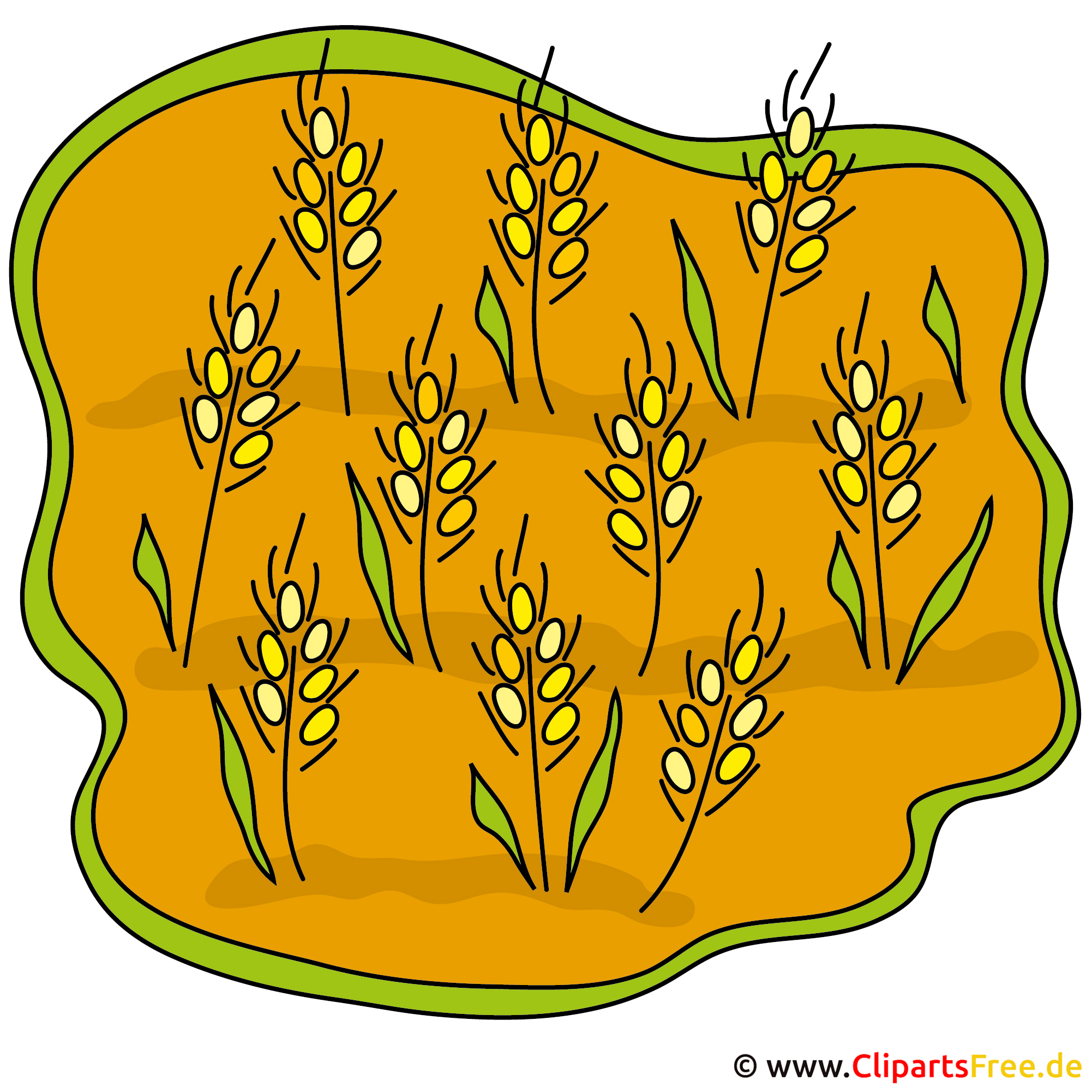Getreide Bild Clipart gratis