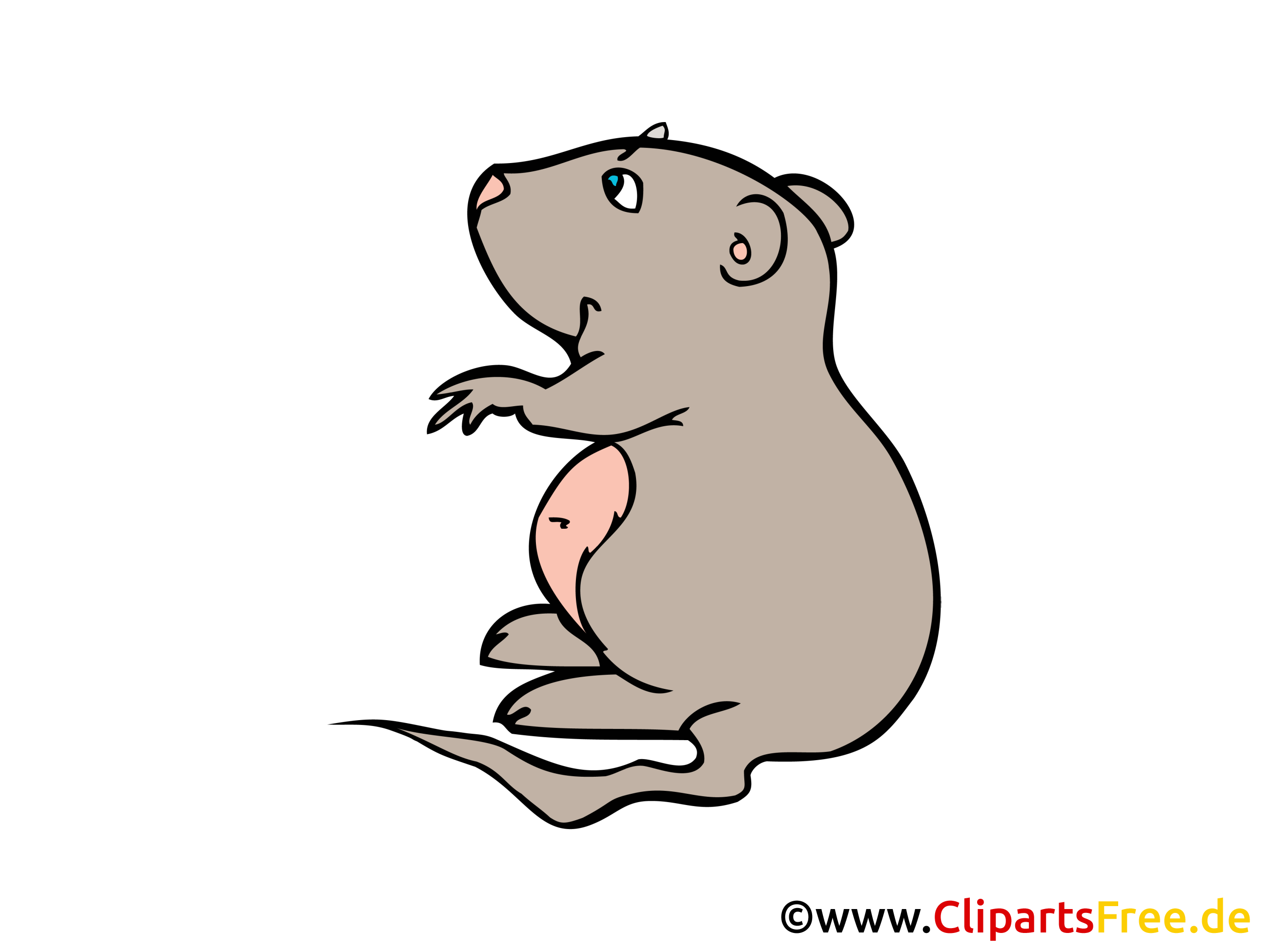 Hamster Cliparts free