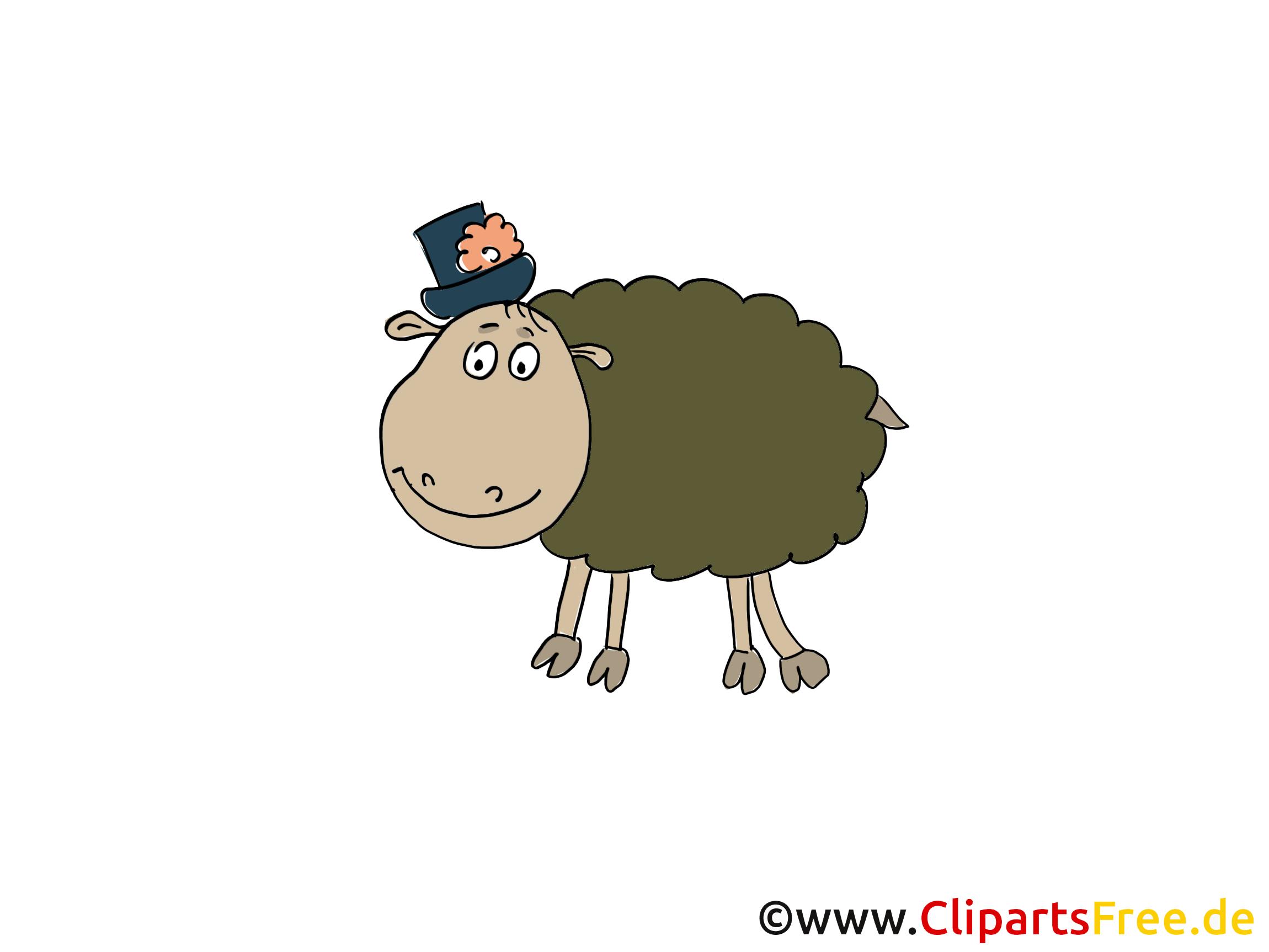 Schafe Zeichnung, Cartoon, Grafik