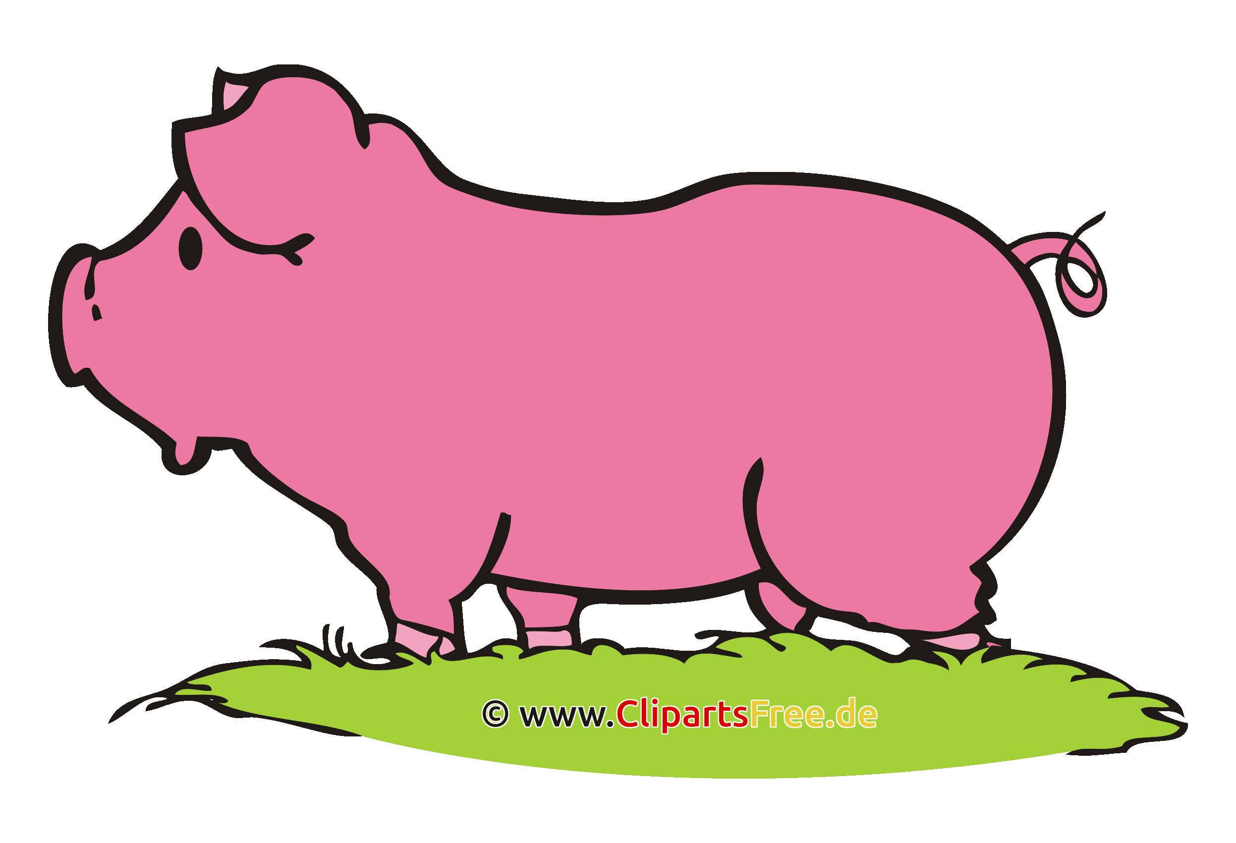 Schwein Clipart, Bild, Cartoon, Grafik, Illustration