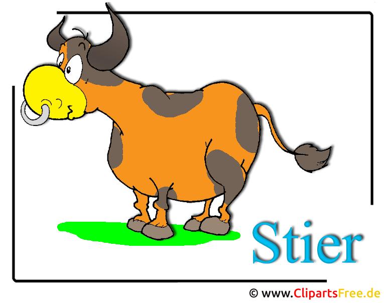 Stier Cartoon Clipart-Bild free