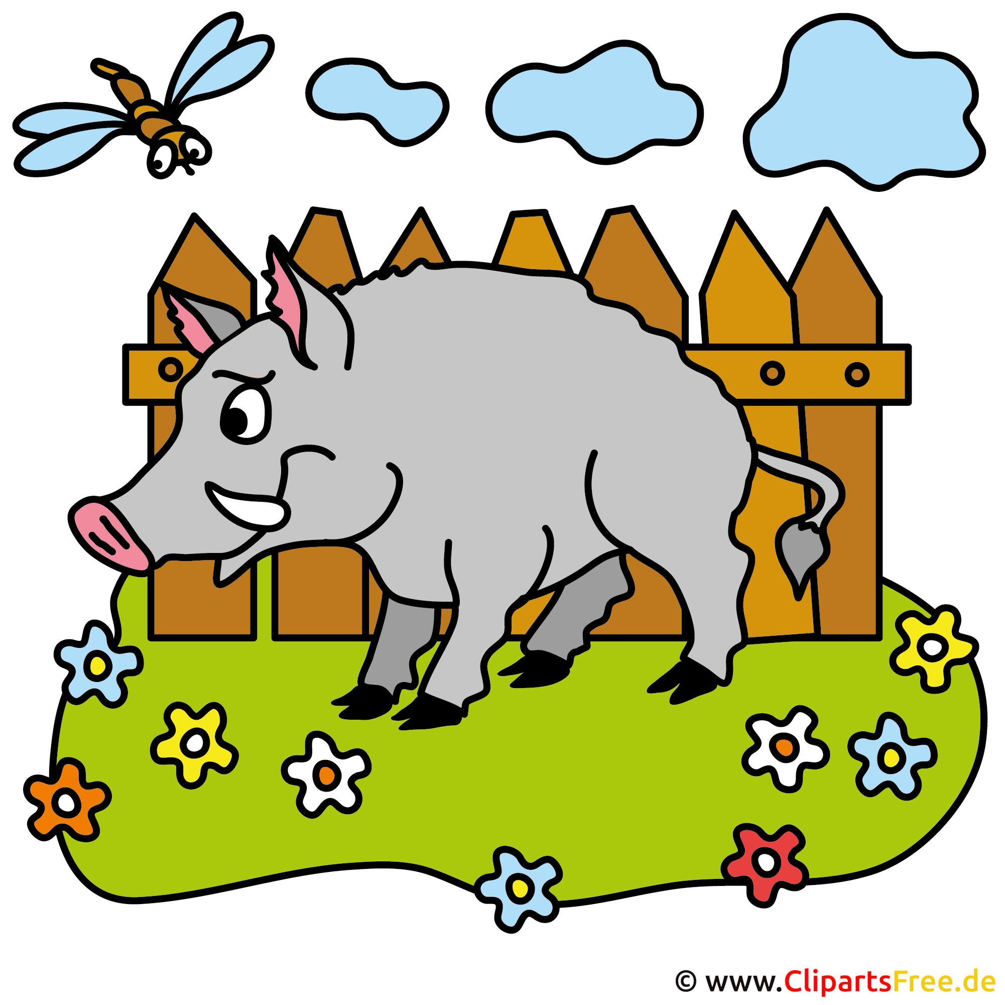 Wildschwein Cartoon Bild kostenlos