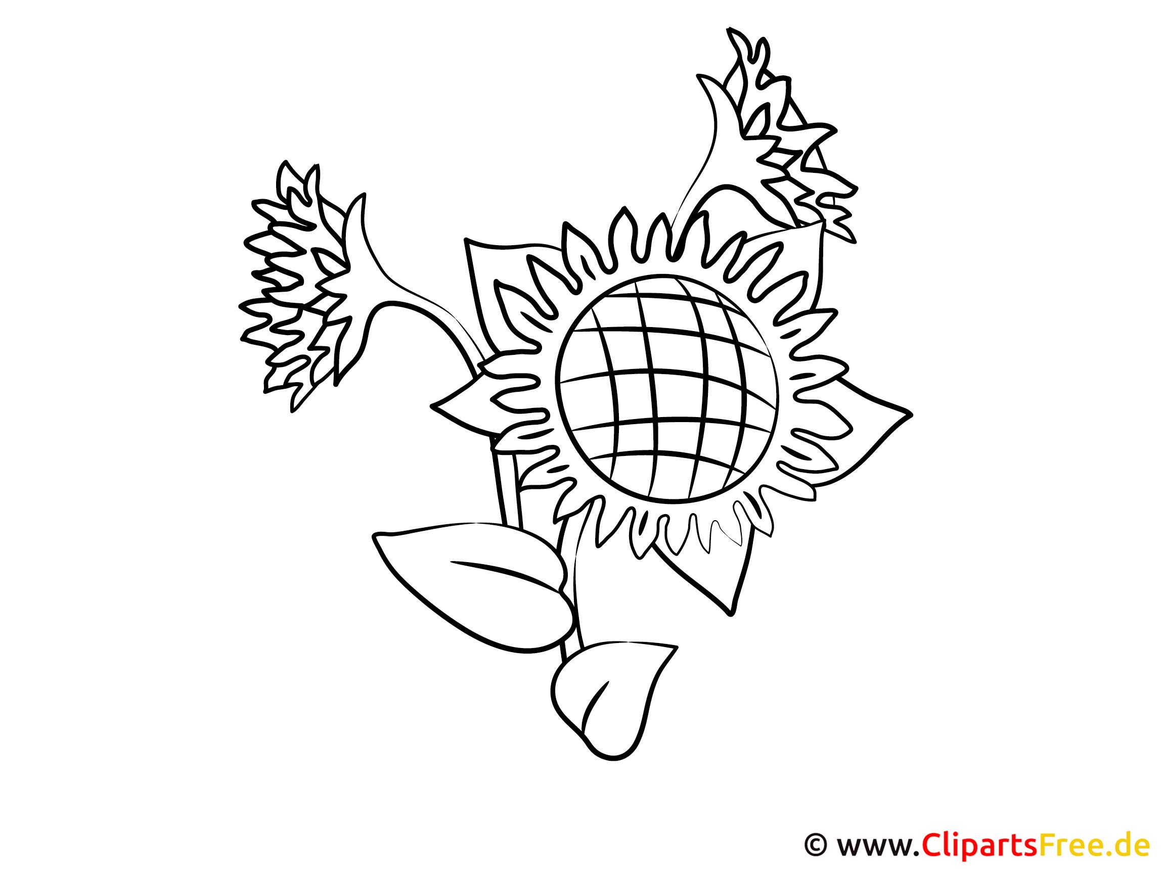 Bauernhof Ausmalbilder zum Ausdrucken - Sonnenblume