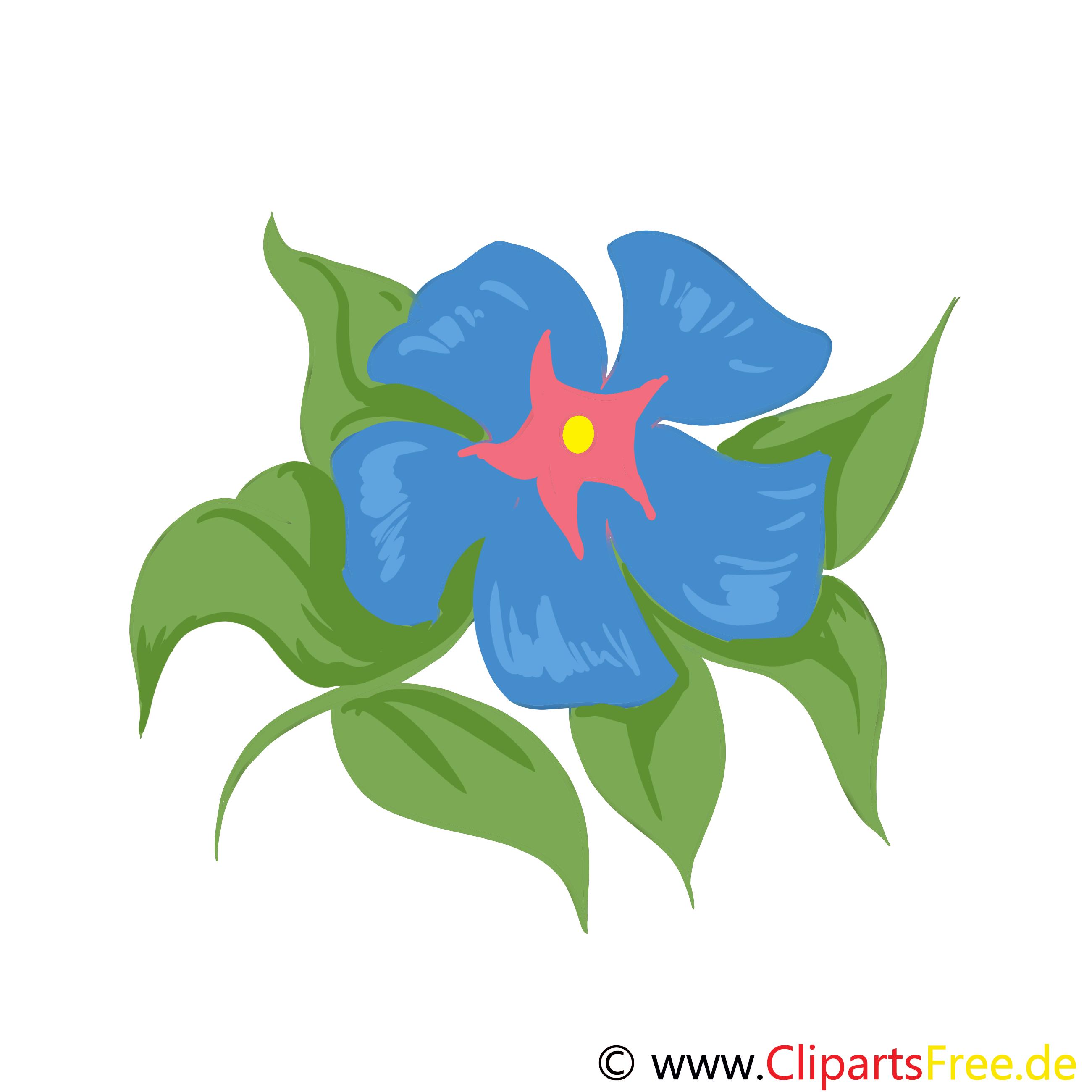Blaue Blume Bild, Clip Art, Grafik, Illustration kostenlos