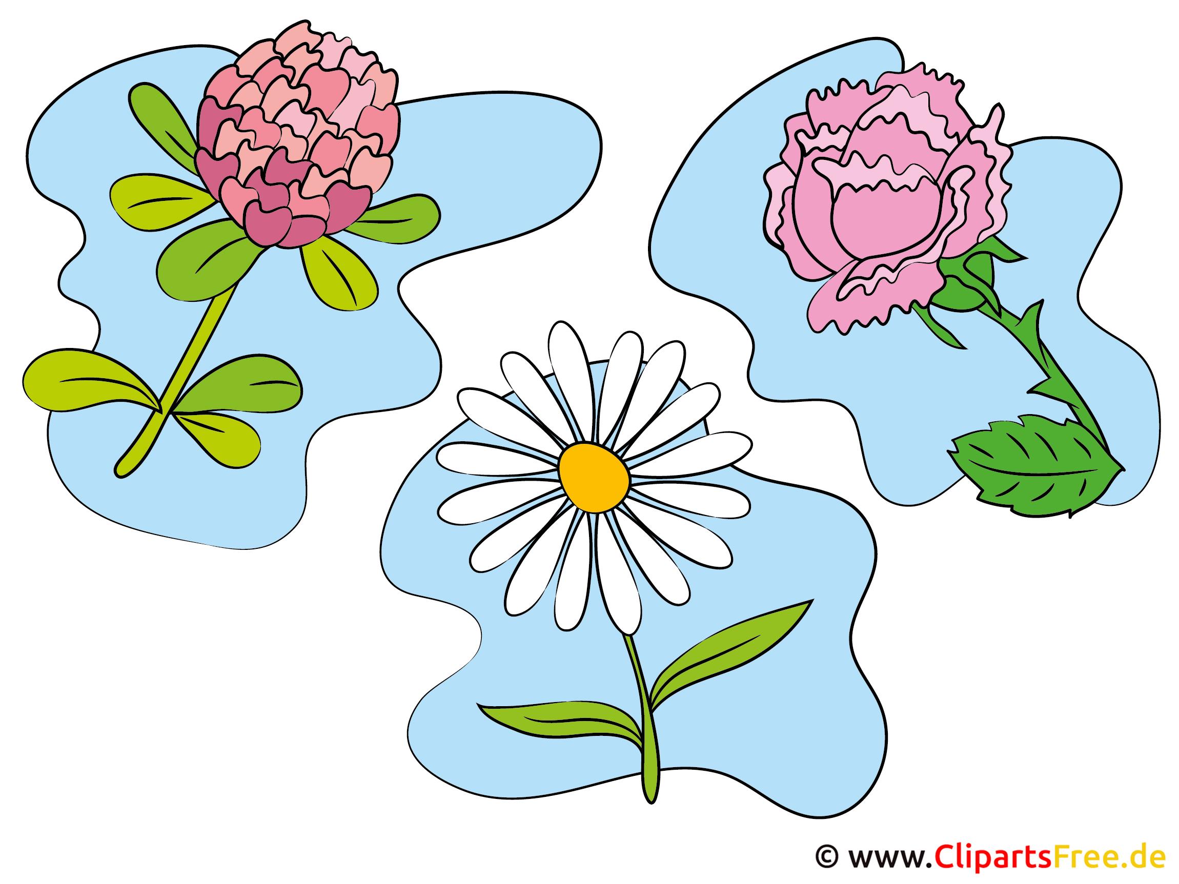 Blumen Clipart