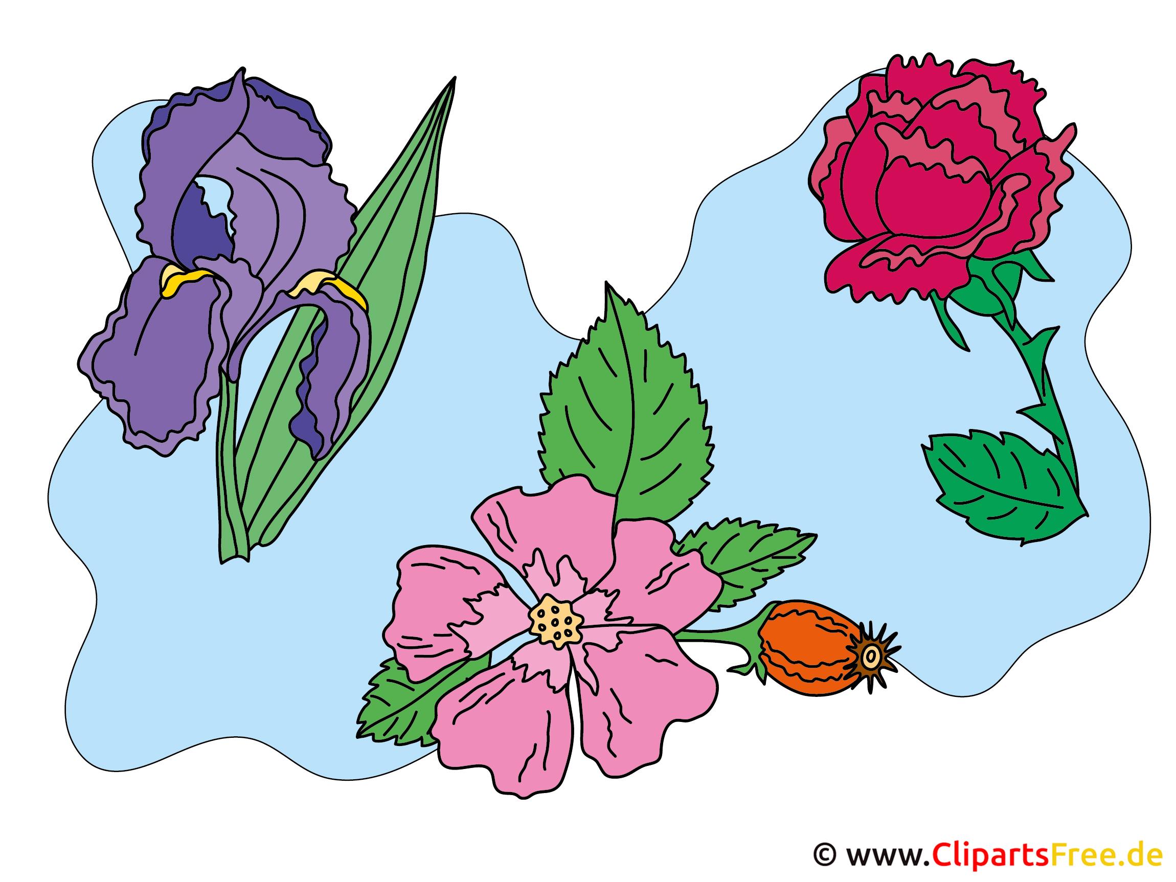 Blumen Pics - Cliparts