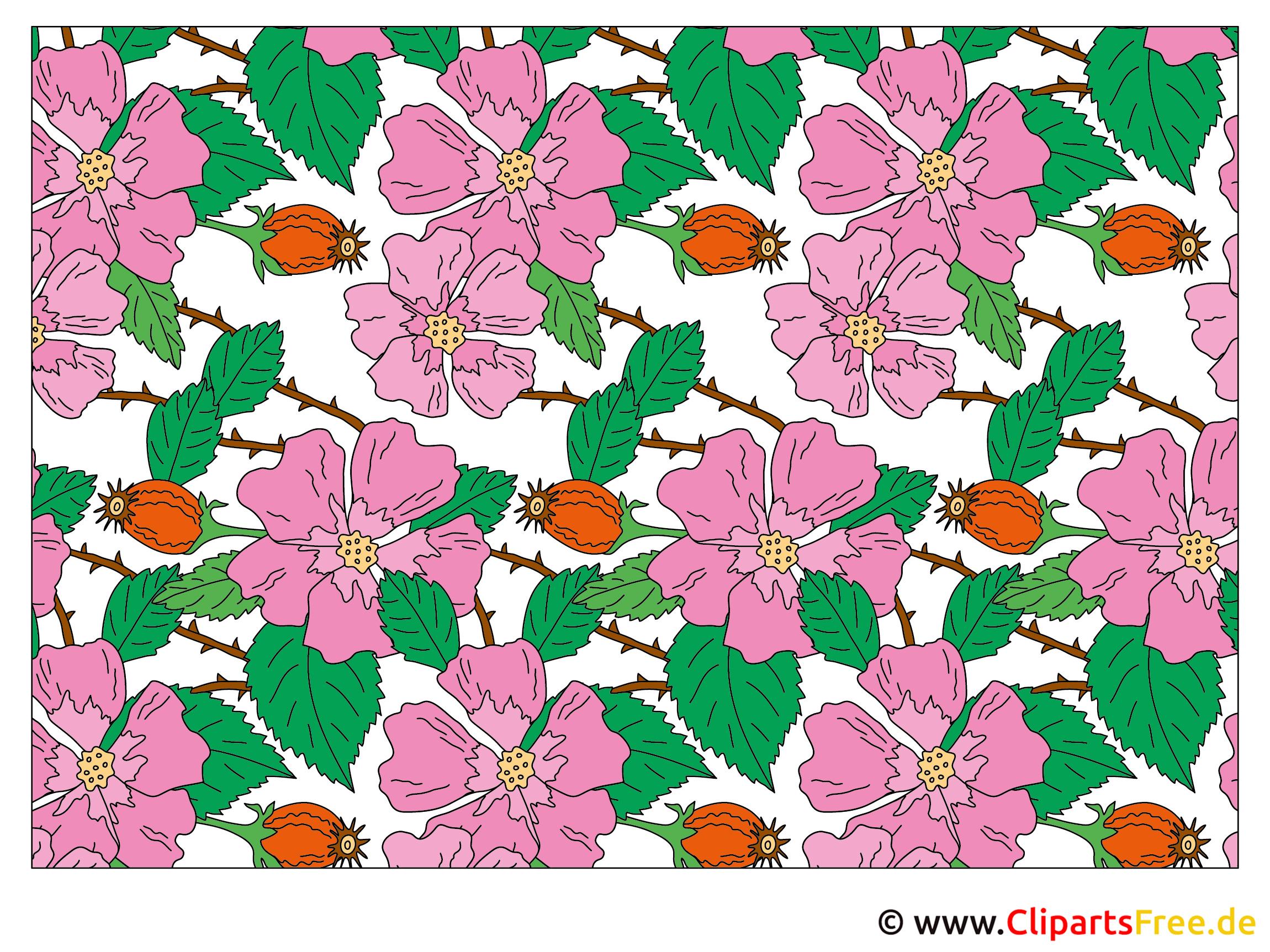 Blumenbilder Cliparts