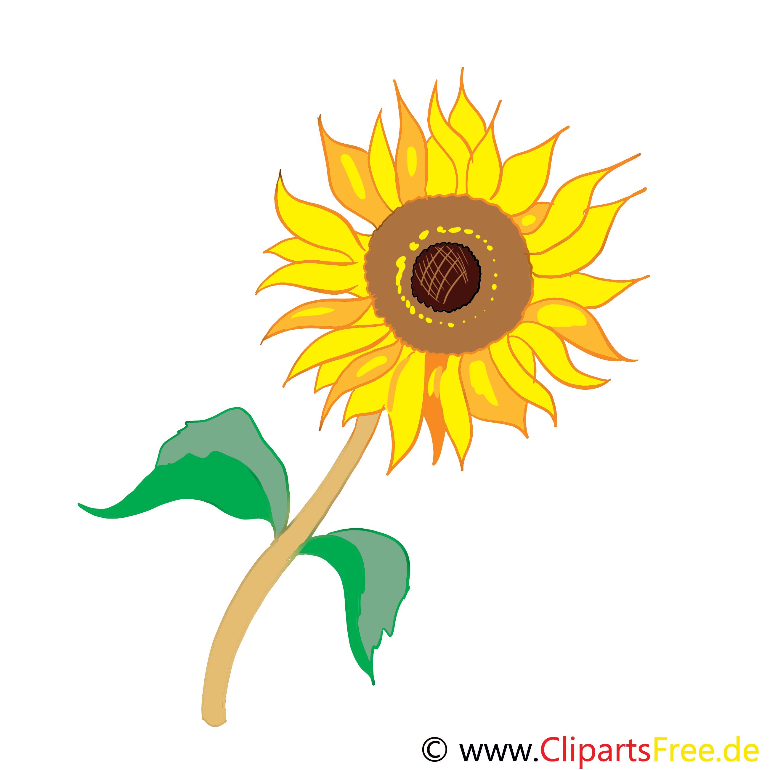 Clip Art Sonnen-Blume kostenlos