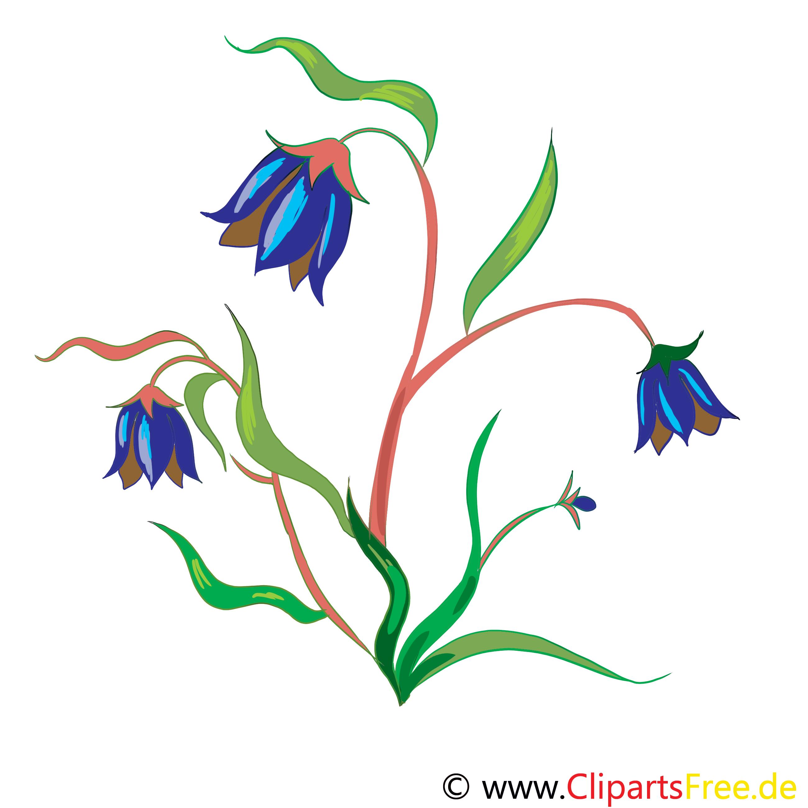 Feldblumen Bild, Clip Art, Grafik, Illustration kostenlos