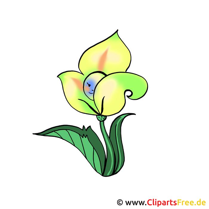 Gelbe Blume Bild-Clipart kostenlos
