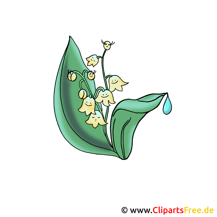 Maiglöckchen Bild - Blumen Bilder und Grafiken kostenlos