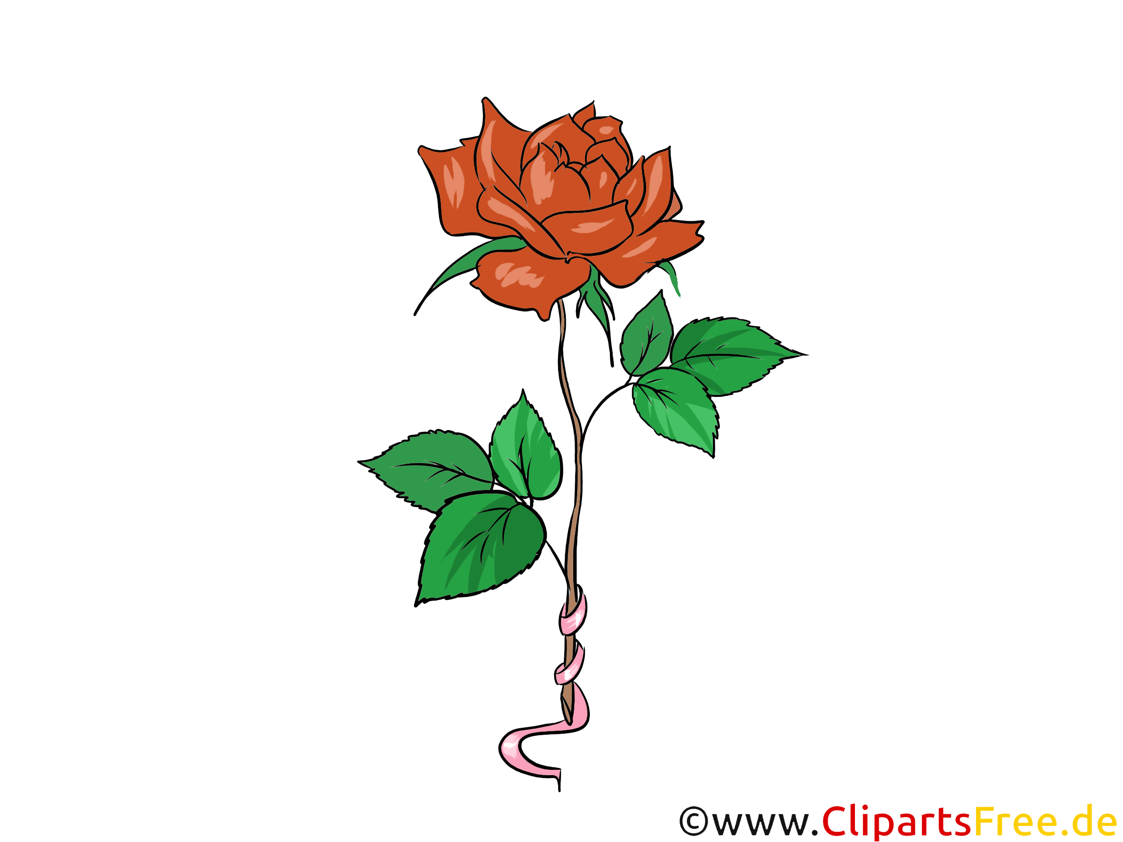 Red rose clipart download for free