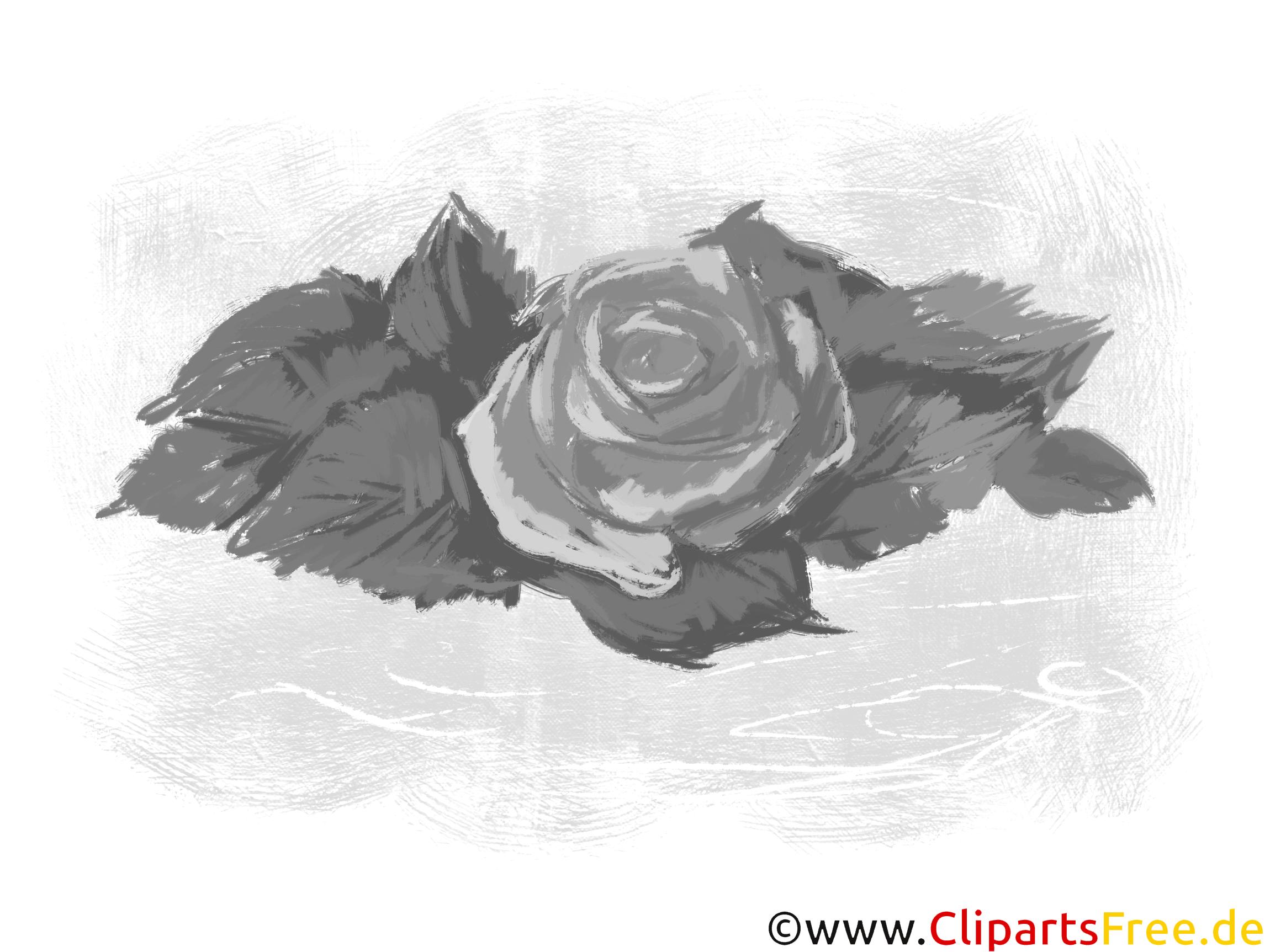 Rose Grafiken und Cliparts in Schwarz-Weiß
