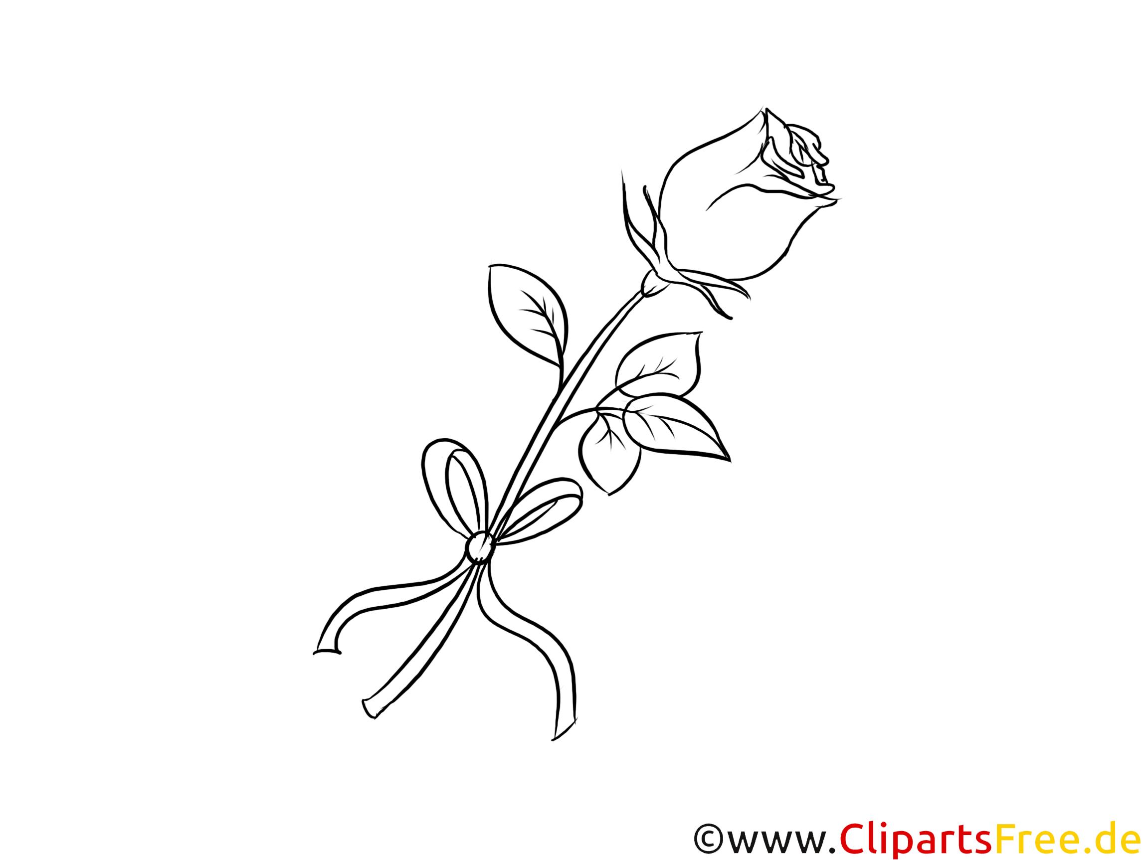 Rose zum Drucken und Ausmalen Clipart, Bild, Grafik