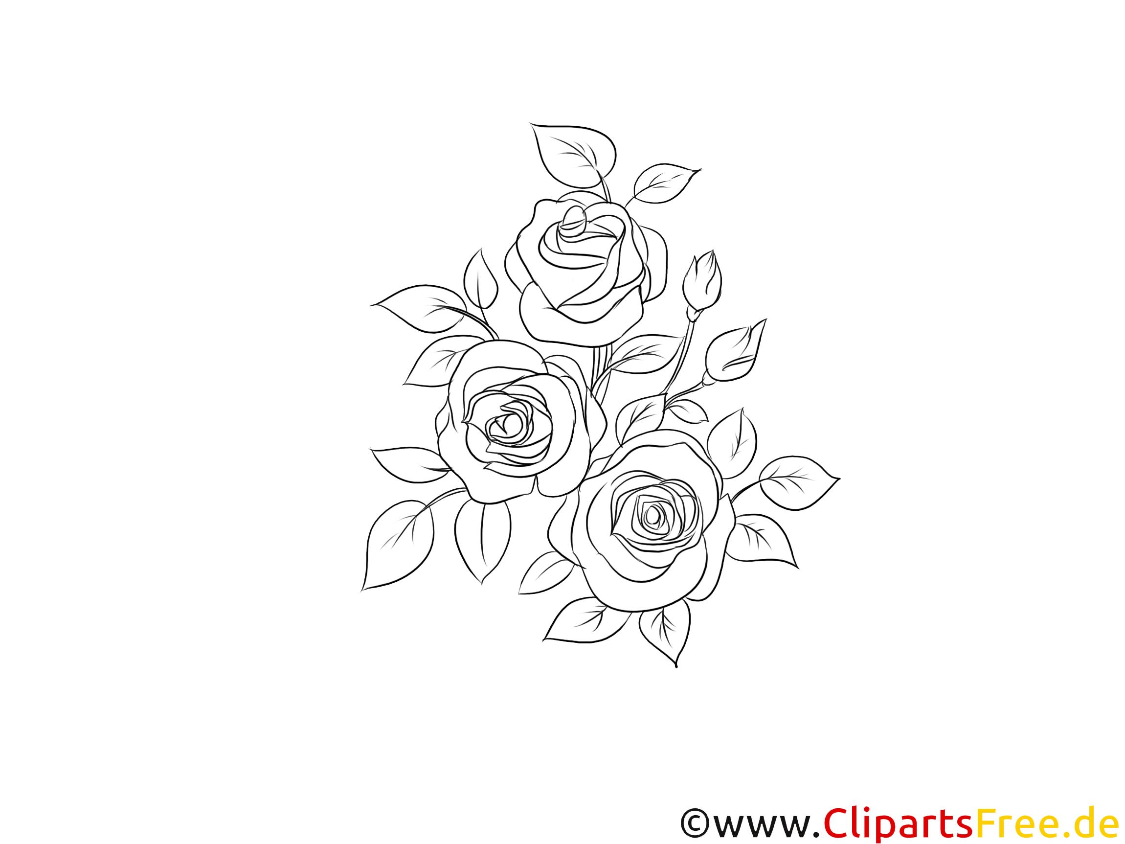 Rosen zum Ausmalen Clipart