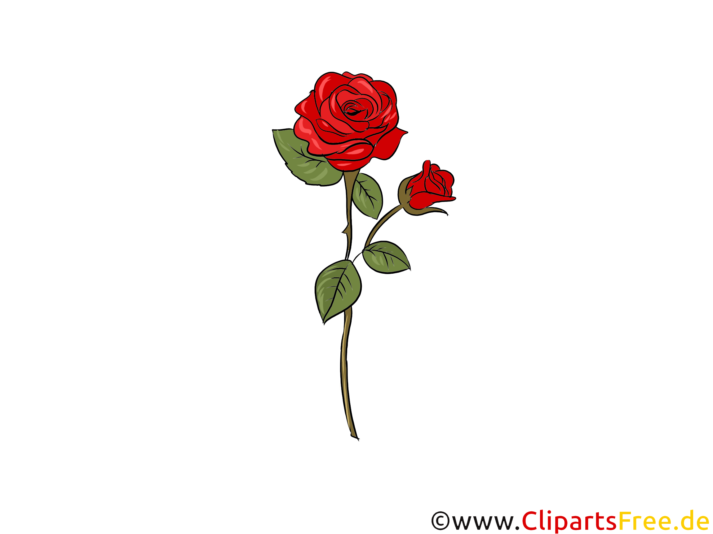 Rote Rose Clipart, Bild, Illustration, Grafik