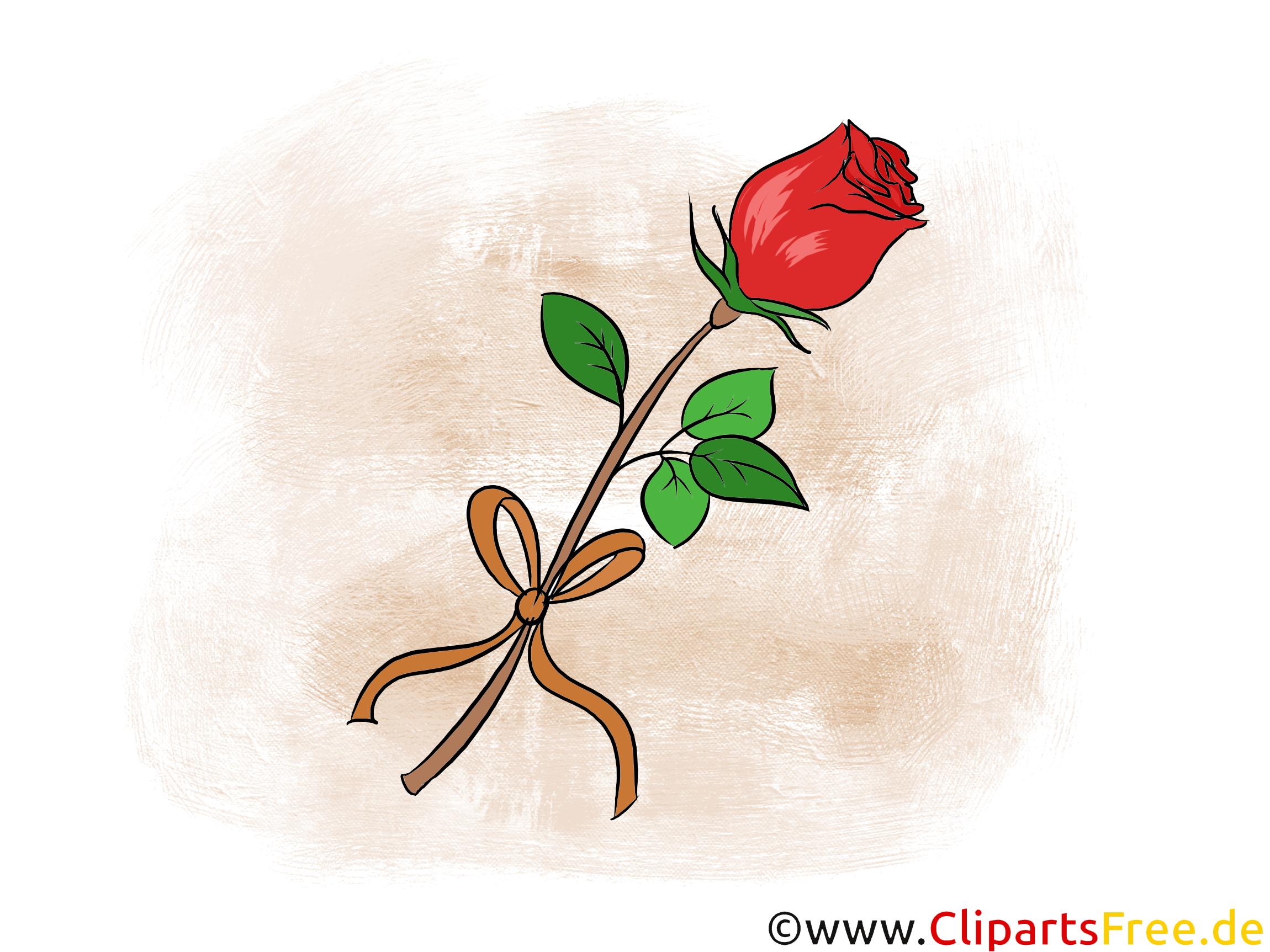 Schöne rote Rose Clipart, Bild, Illustration, Grafik