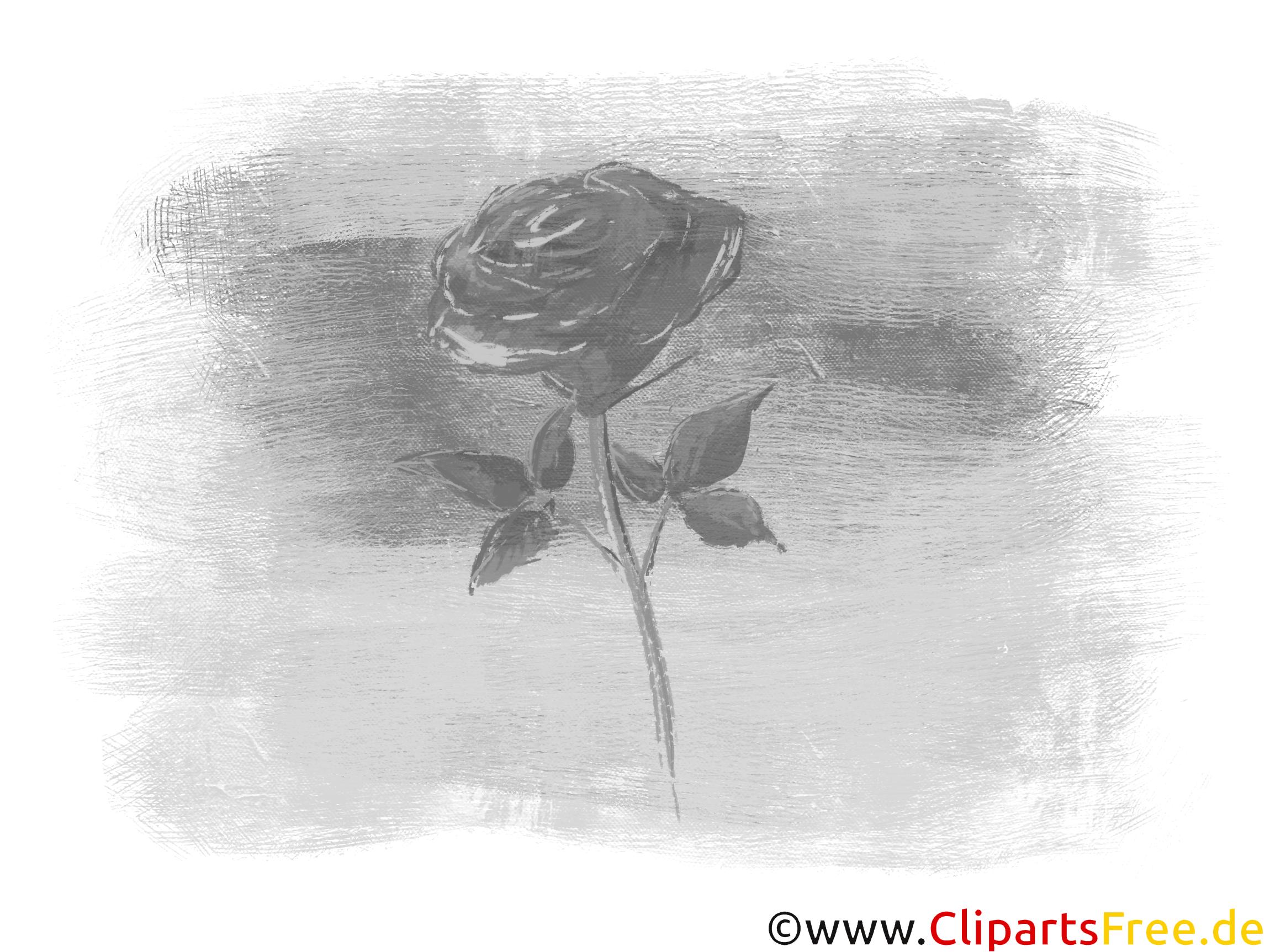 Schwarz-weißes Bild mit Rose
