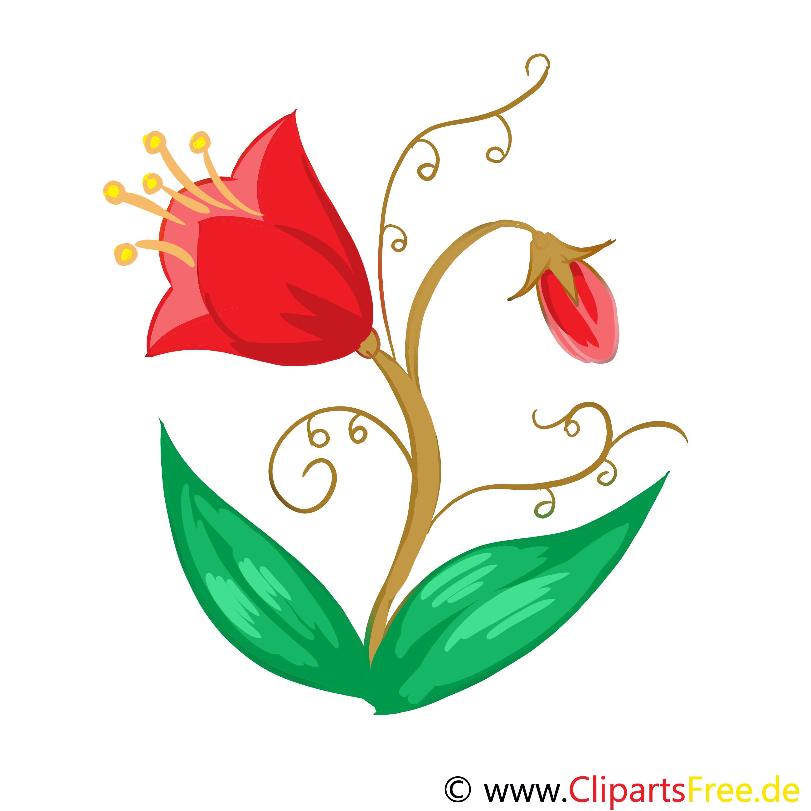 Tulpen Bild, Clip Art, Grafik, Illustration kostenlos