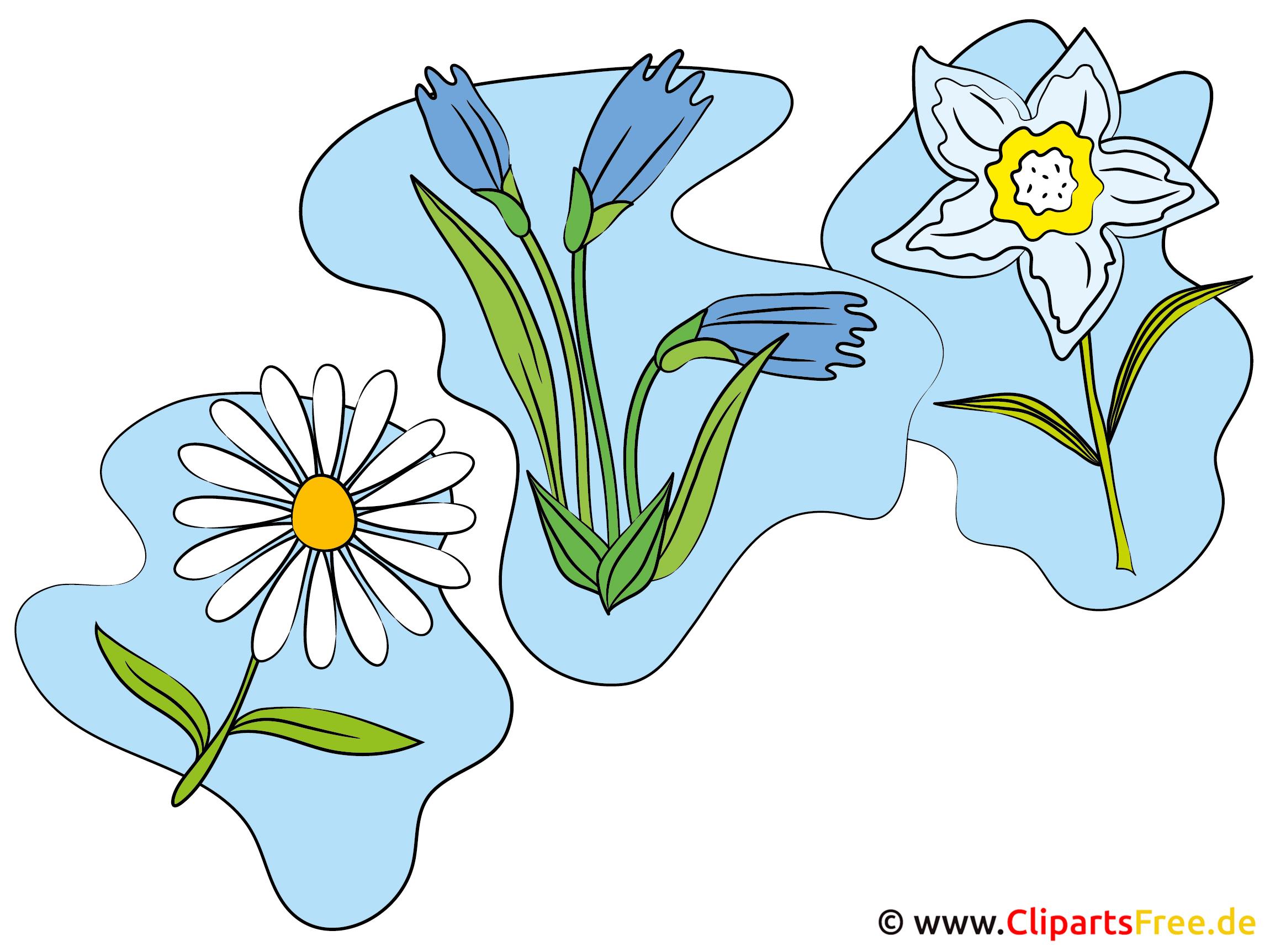 Wildblumen Clipart