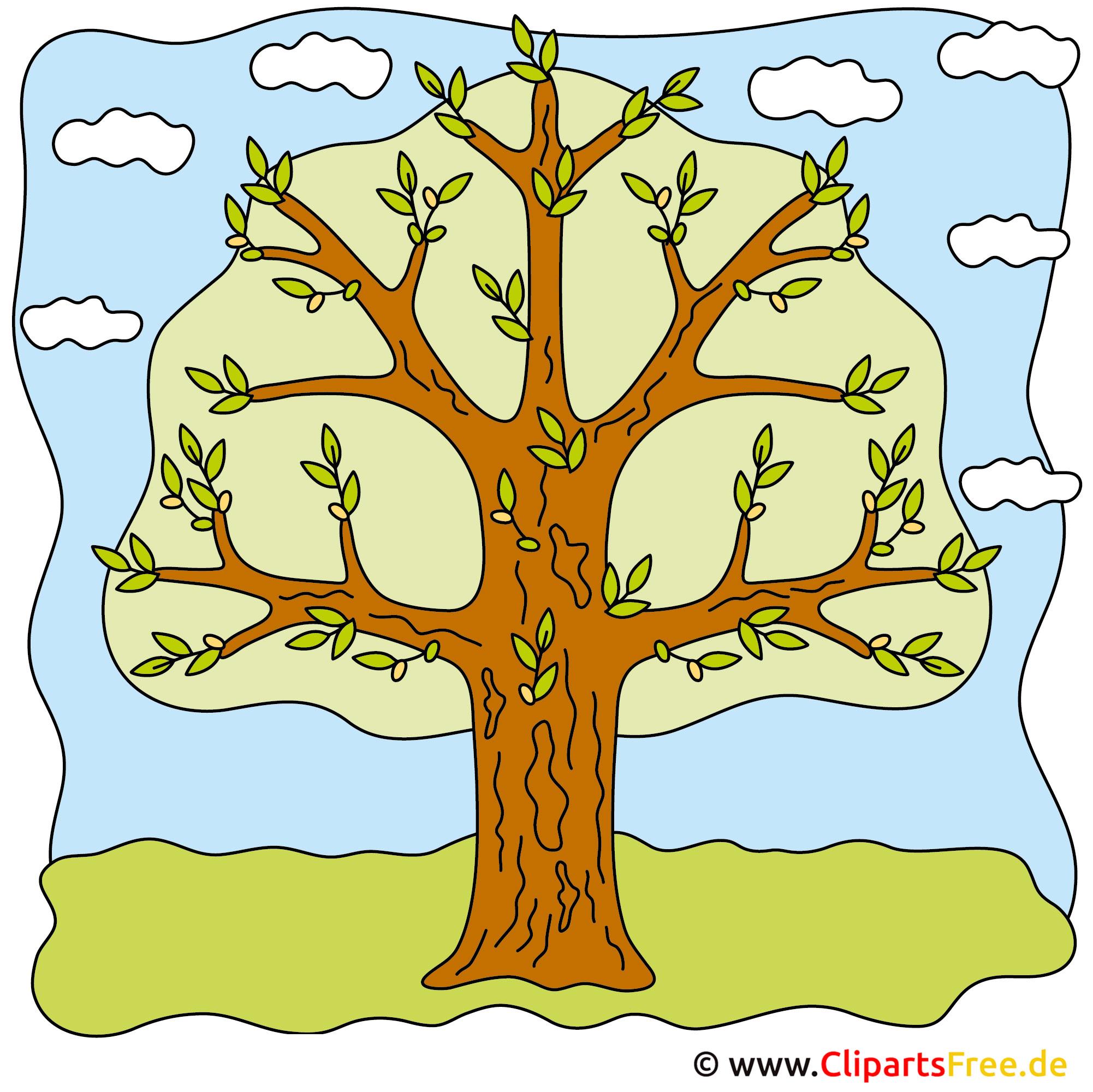 Frühling Bilder - Baum auf der Wiese
