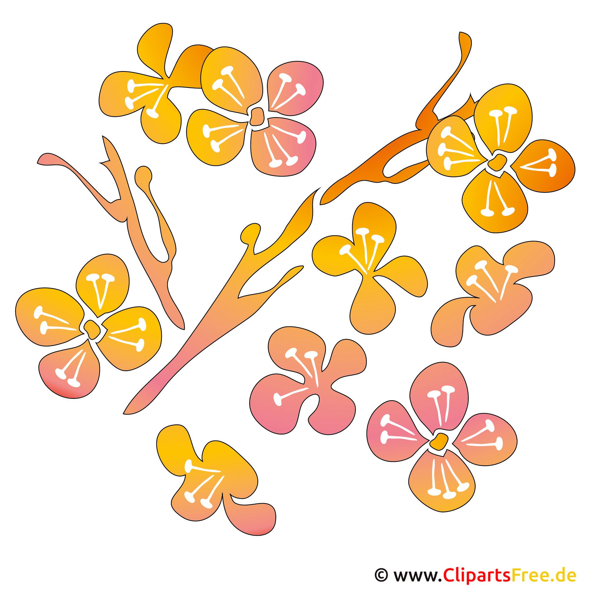 Frühling Cliparts kostenlos - Blumen