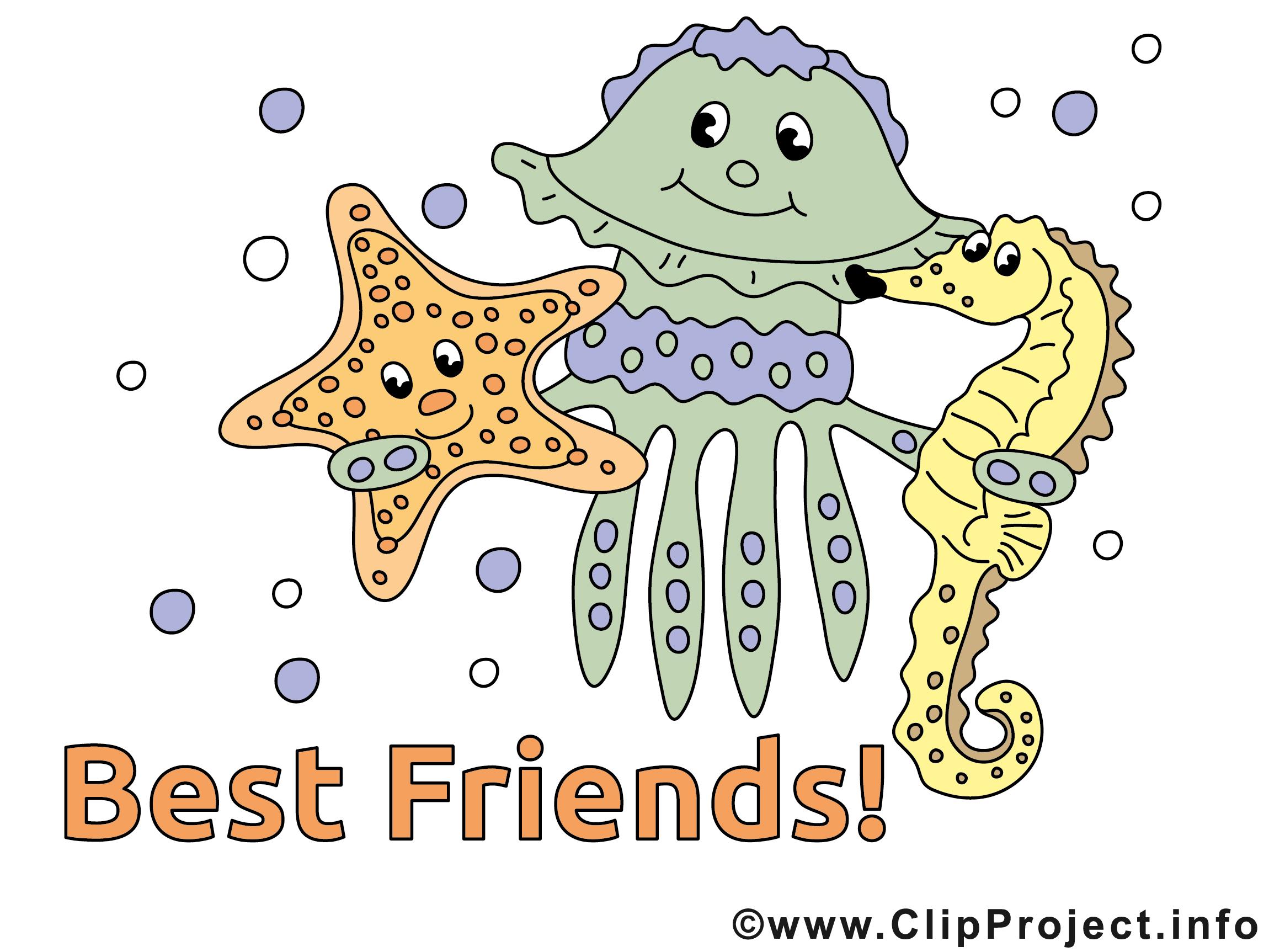 Bild Beste Freunde
