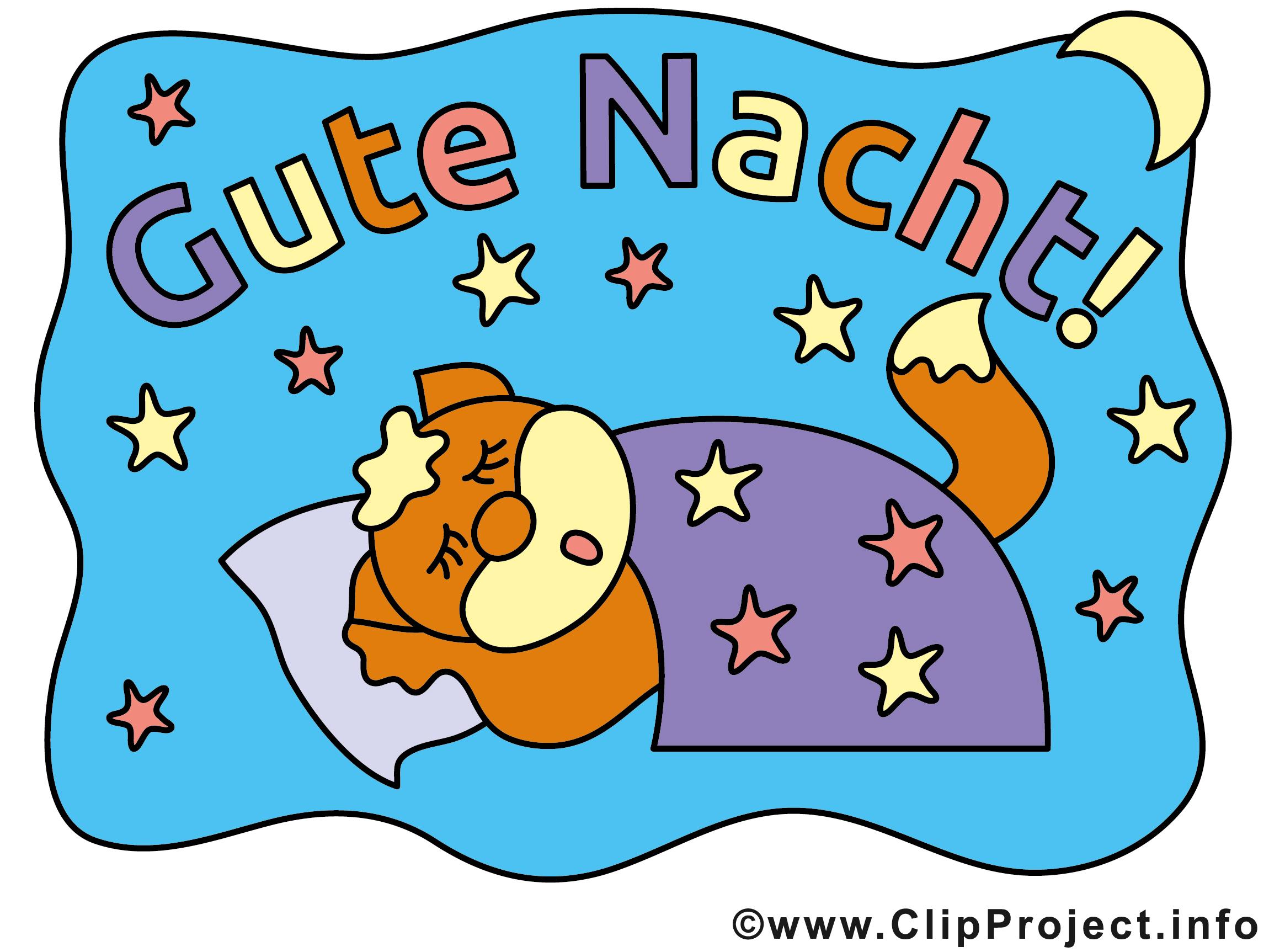 Gute Nacht Katze Bild
