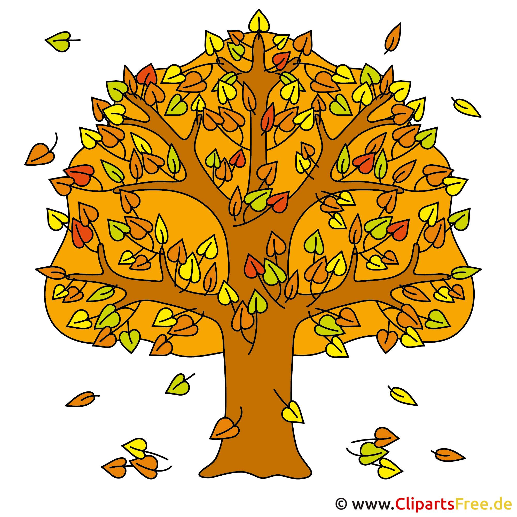 Baum Clip Art Herbst Bilder Gratis