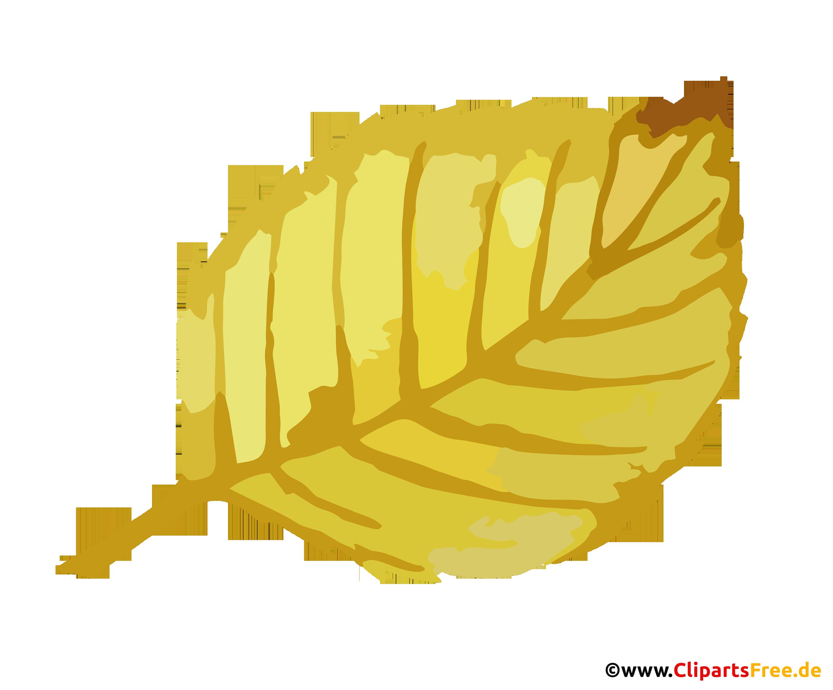 Linde Baumblatt im Herbst Clipart, Bild transparent